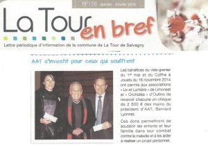 vide grenier La Tour de Salvagny-liv et lumière